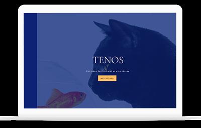 Web Projekt Tenos